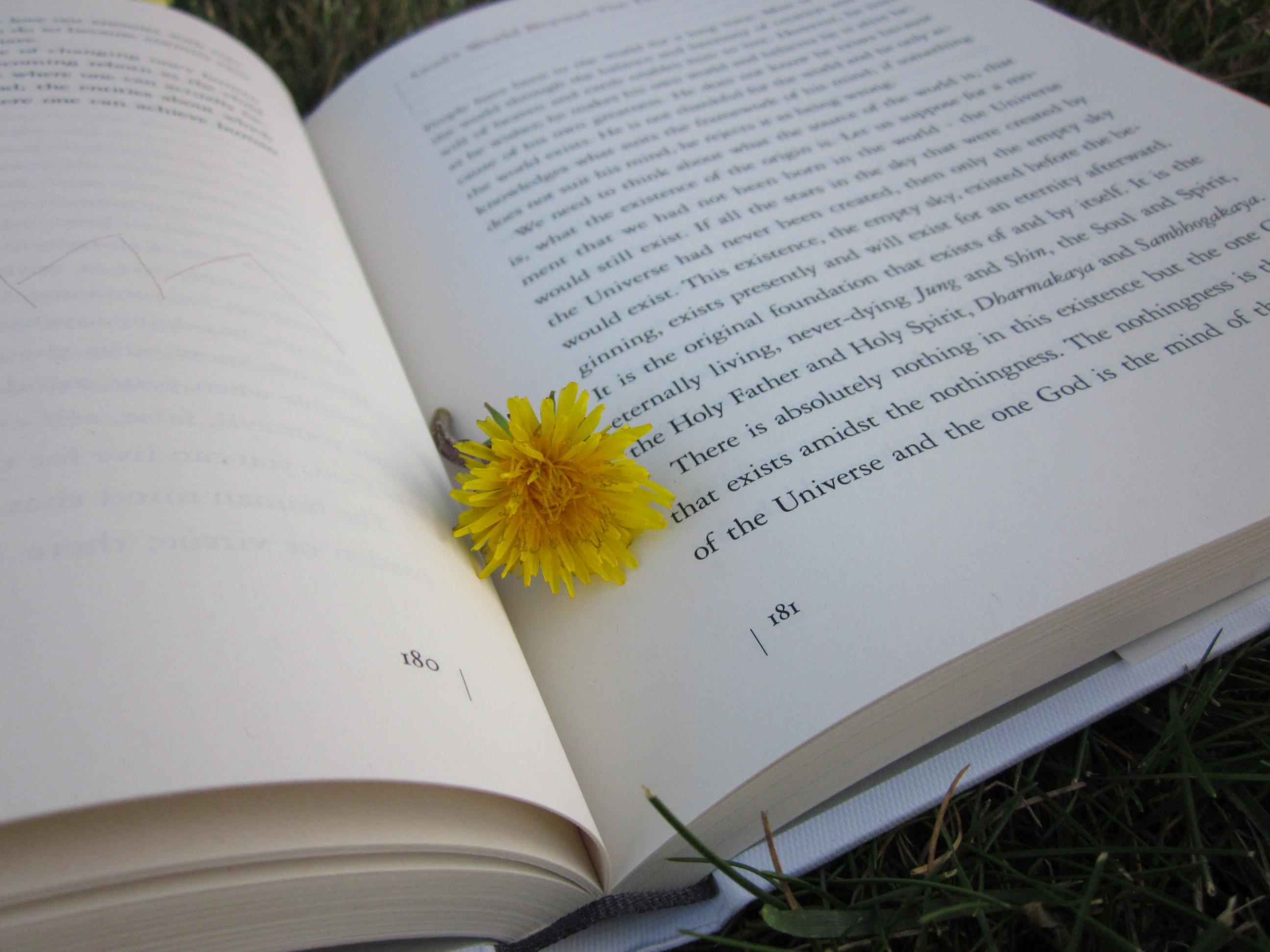 The Meaning Of Life - Wisdom's Webzine