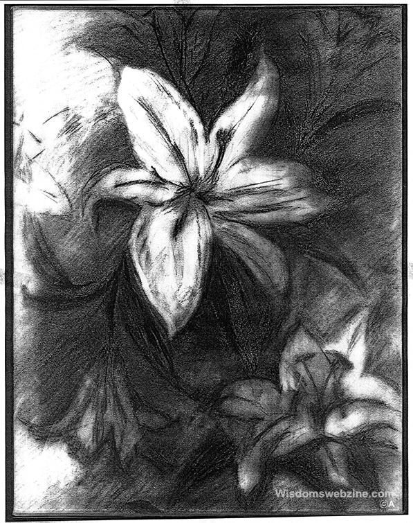 Wisdomswebzine-A-drawing