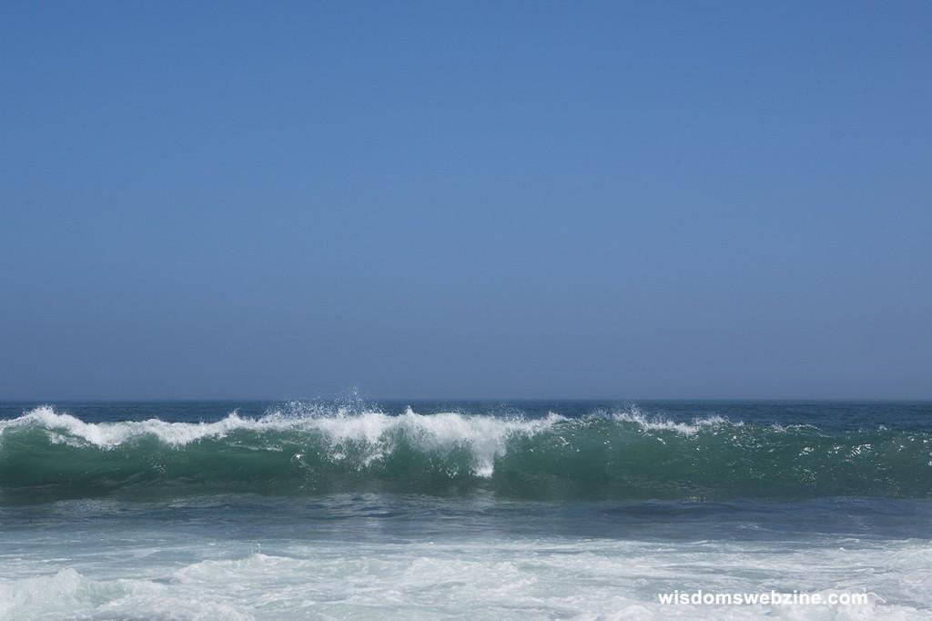 Sea Is A Mother - Wisdom's Webzine